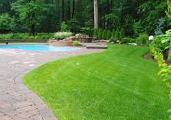 Lawn Care Grounds Maintenance